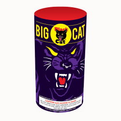 Black Cat Big Cat